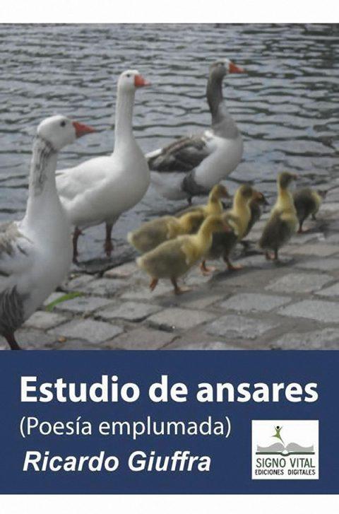 Estudio de Ansares